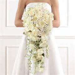 Cascade with With White Roses and White Orchids