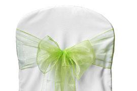 Chair Sashe Organza Color Apple Green