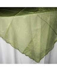 Overlay Organza Color Sage Green