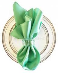 Satin Napkin Sage Green